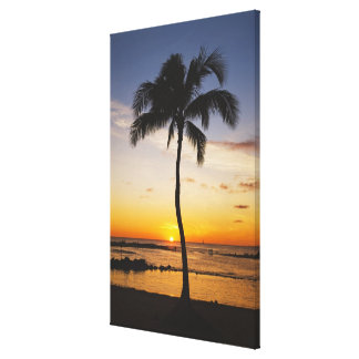 Silhouette of one Palm Tree by a Red Orange Sunset Canvas Print