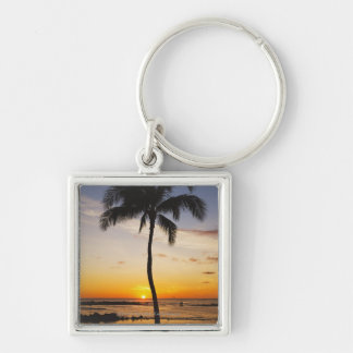 Silhouette of one Palm Tree by a Red Orange Sunset Key Ring