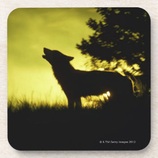 Silhouette of wolf howling beverage coaster
