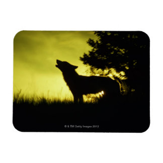 Silhouette of wolf howling rectangular photo magnet