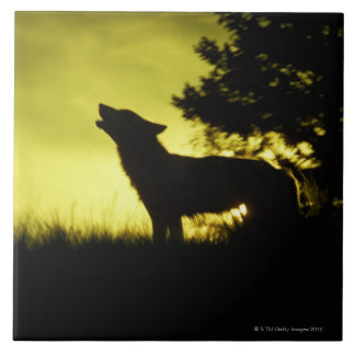 Silhouette of wolf howling tile