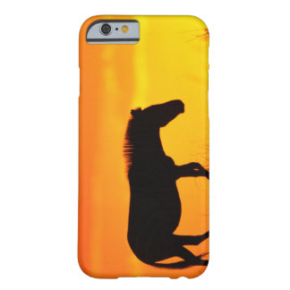 Silhouette of zebra on savanna barely there iPhone 6 case