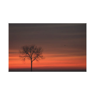 Silhouette Tree Stretched Canvas Print