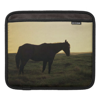 Silhouetted Horse iPad Sleeves