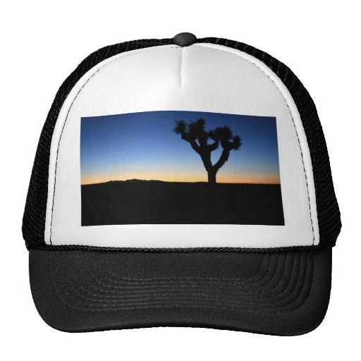 Silhouetted Joshua Tree Hats