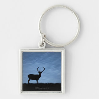 Silhouetted Red Deer Stag at Night Key Ring