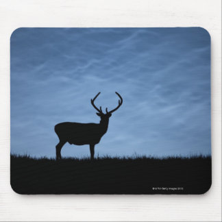 Silhouetted Red Deer Stag at Night Mouse Pad