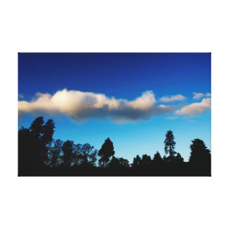 Silhouetted trees at dusk canvas print