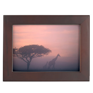 Silhouettes Of Giraffes Keepsake Box