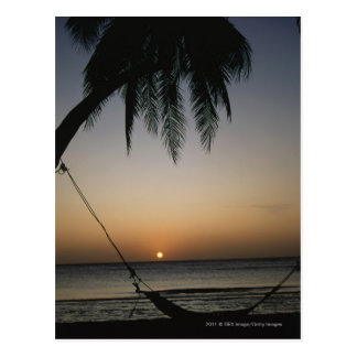 Silhuetted empty hammock at sunset postcard