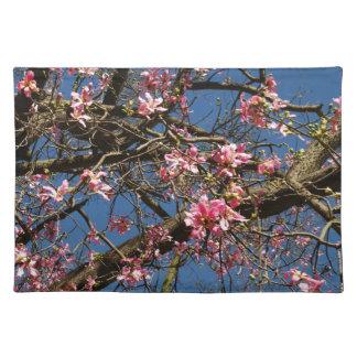 Silk Floss Tree Blossom Placemat