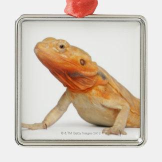 SilkBacks scaleless Bearded Dragon - Pogona Silver-Colored Square Decoration