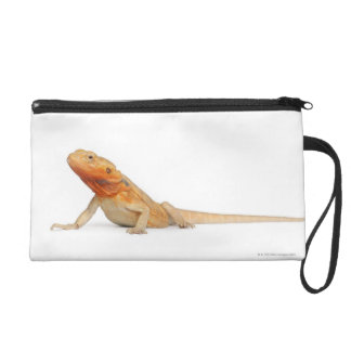 SilkBacks scaleless Bearded Dragon - Pogona Wristlet