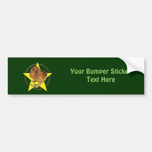 Silkie Red Chick Star Bumper Stickers