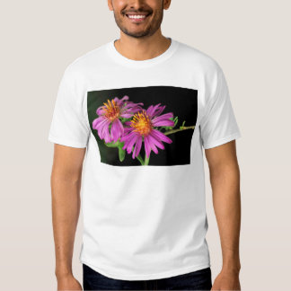 Silky Aster Shirts