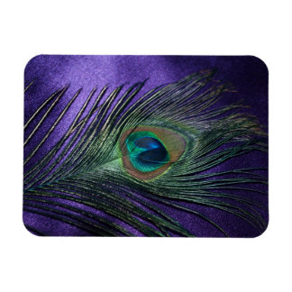 Silky Purple Peacock Feather Magnet