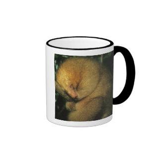 Silky Pygmy) Anteater, Cyclopes didactylus), Coffee Mug