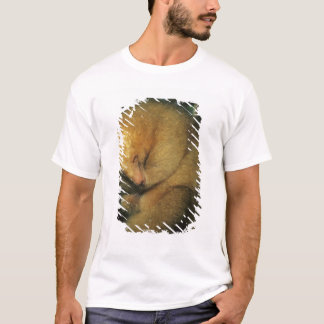 Silky Pygmy) Anteater, Cyclopes didactylus), T-Shirt