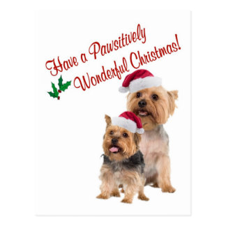 Silky Terrier Christmas Wishes Postcard
