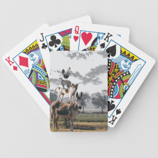 Silly Animal Playing Cards