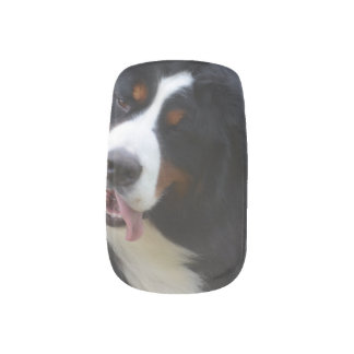 Silly Bernese Mountain Dog Minx Nail Art