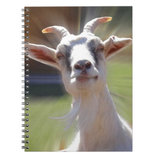 Silly BillyGoat Photograph Notebook