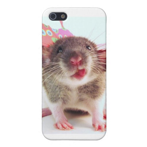 Silly Flutterby Rat iPhone 5 Case