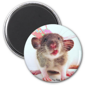 Silly Flutterby Rat Magnet