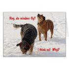 Silly Funny Cattle Dogs Christmas Snow Card