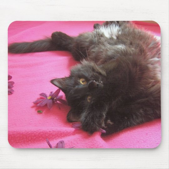 silly gal mouse mat