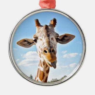 Silly Giraffe Christmas Ornament