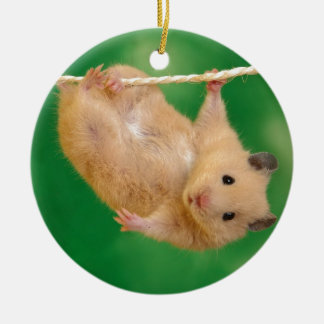 silly hampster christmas ornament