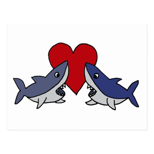 Silly Sharks in Love Art Post Cards