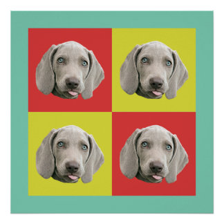 Silly Weimaraner Pop Art Poster