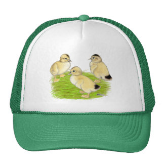 Silver Appleyard Ducklings Cap