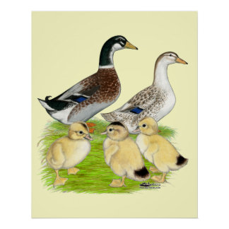 Silver Appleyard Family Poster