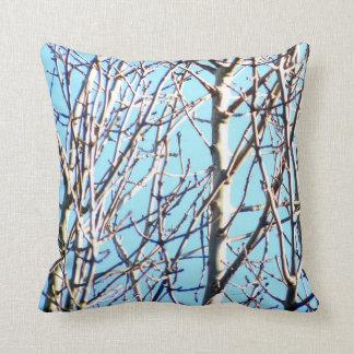 Silver Birch Trees Cushion