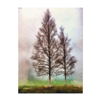Silver Birches Canvas Print