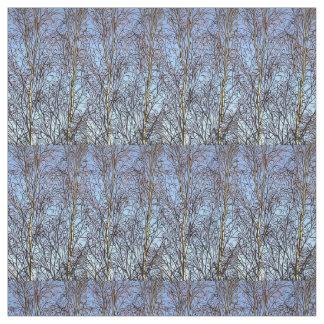 Silver Birches Fabric