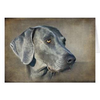 Silver Blue Weimaraner Portrait Greeting Card