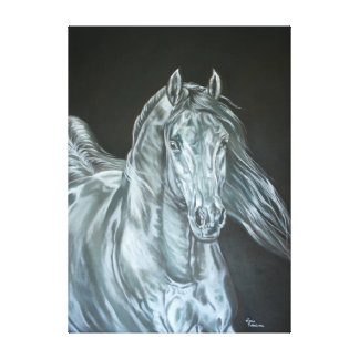 Silver Stretched Canvas Print