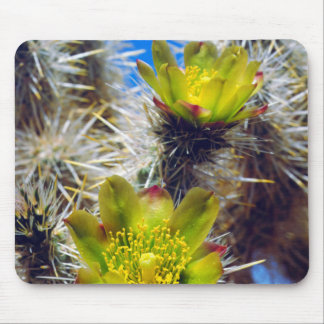 Silver Cholla Cactus Wildflowers Mouse Mat