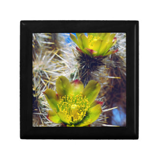 Silver Cholla Cactus Wildflowers Small Square Gift Box