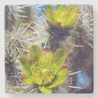 Silver Cholla Cactus Wildflowers Stone Coaster