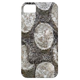 Silver Fern Tree iPhone SE+5/5S Case