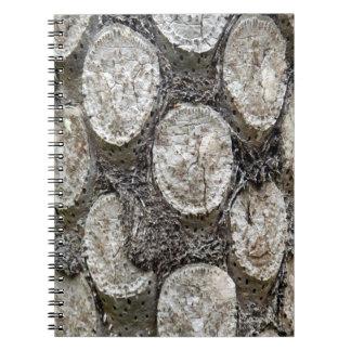 Silver Fern Tree Photo Notebook
