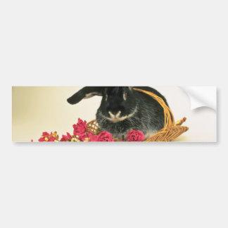 Silver fox rabbit named Boris flowers Car Bumper Sticker