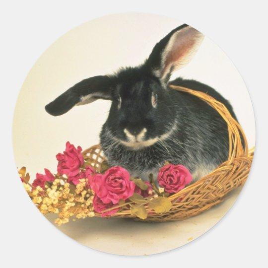 Silver fox rabbit named Boris flowers Classic Round Sticker