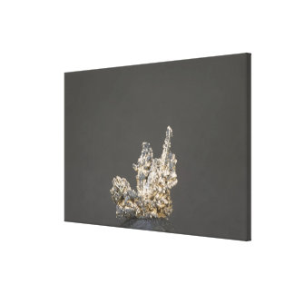 Silver, Germany Gallery Wrap Canvas