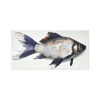 Silver Goldfish Painting Canvas Print